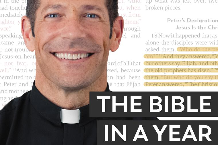 In his daily, 18- to 20-minute podcast, Father Mike Schmitz takes on reading through the entire Bible in a set of 365 segments.