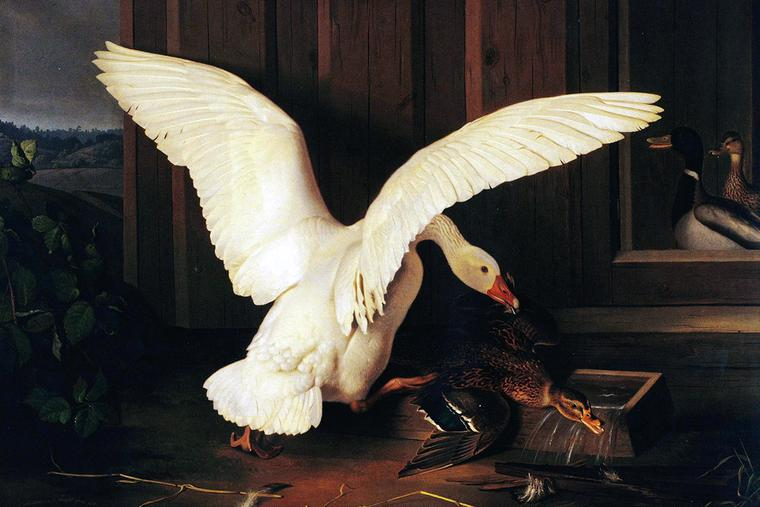 "Ferdinand von Wright, ""The Goose Disciplines the Duck,"" 1858"
