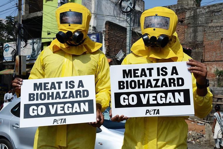 Indian activists from People for the Ethical Treatment of Animals (PETA) dressed in hazmat suits hold placards during a demonstration in Hyderabad on Jan. 5, 2015.