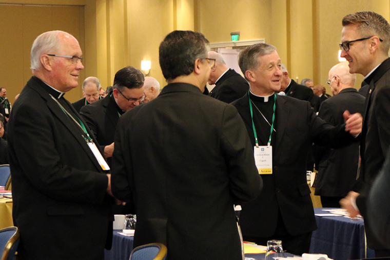 Bishops take part in the final public session of the U.S. Conference of Catholic Bishops' General Assembly on Thursday, June 13, 2019.