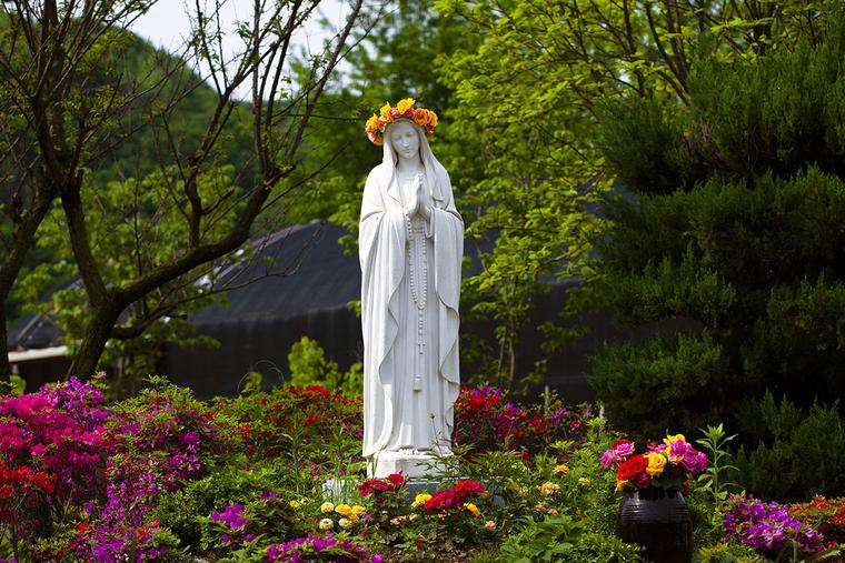 """""""A Garden For Our Lady"""""""