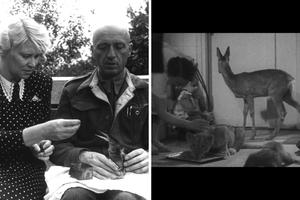A new documentary tells the story of Jan and Antonina Żabiński, who saved Jewish lives during World War II by hiding people among the animals at the Warsaw Zoo.