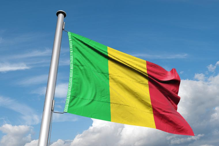 Flag of Mali waves in the wind.