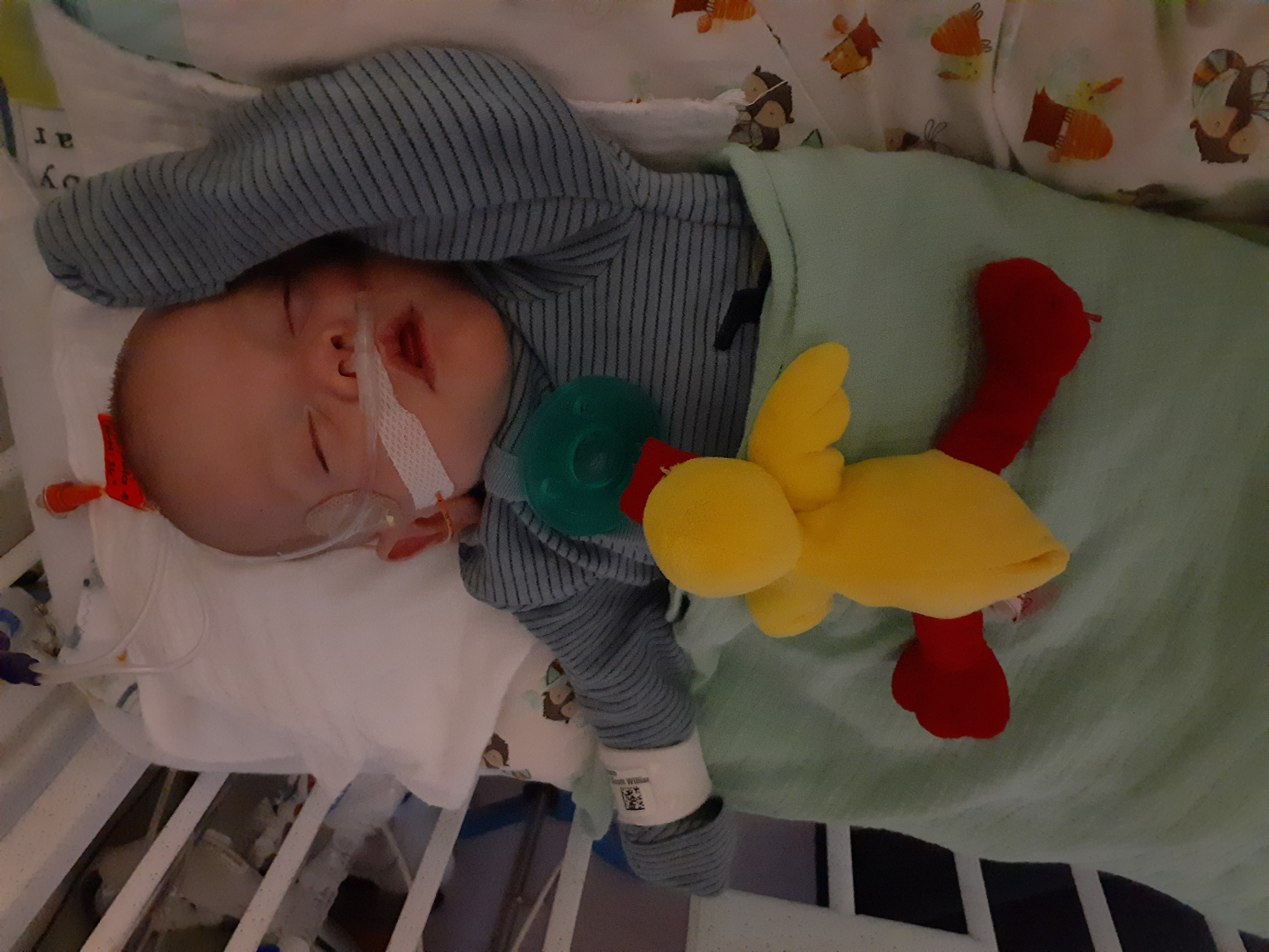 Baby Richard fighting for his life within the Minneapolis NICU.