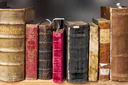 Books Photo byGerhard G.fromPixabay