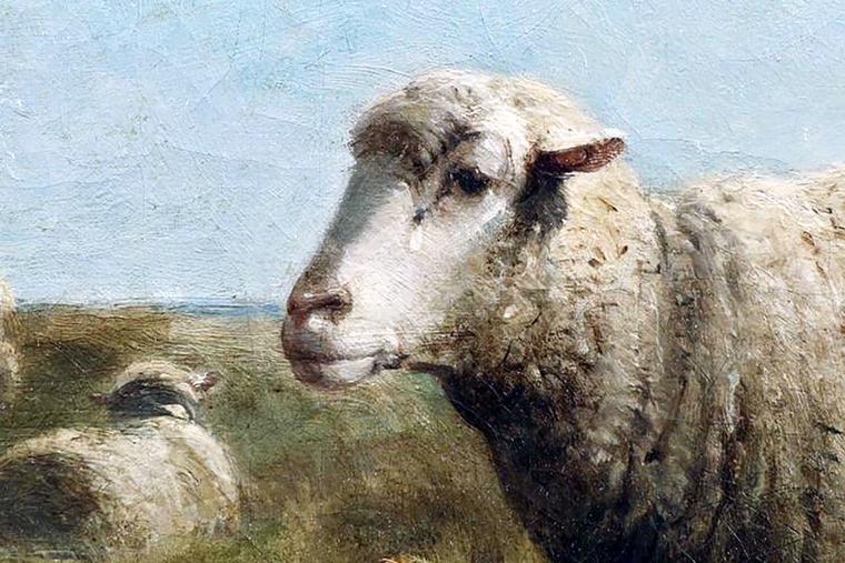 """Cornelius Van Leemputten (1841-1902), """"Sheep"""""""