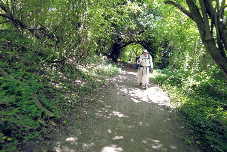 The Dominican pilgrims walk through Whitehorse Wood on their way to Wrotham Aug. 5.