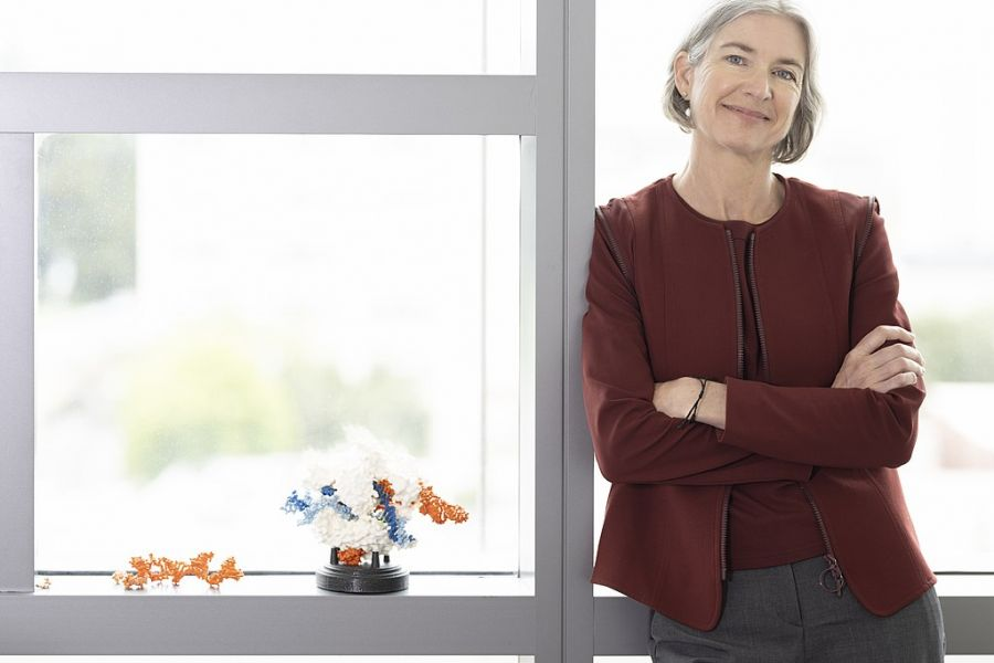 Jennifer Doudna, a co-inventor of CRISPR gene editing, who was appointed a member of the Pontifical Academy of Sciences Aug. 11, 2021.