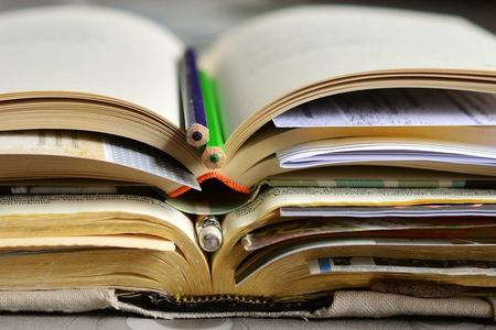 Books Photo by congerdesign from Pixabay