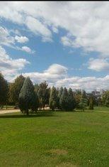 oblačno, vremenska prognoza, Podgorica