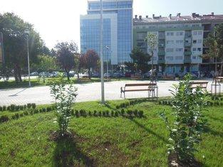 Trg Save Kovačevića
