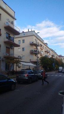 ulica balšića
