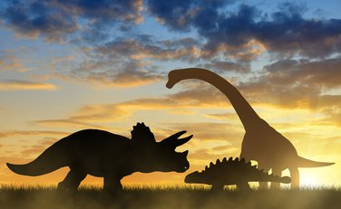 dinosaurus, dinosaurusi