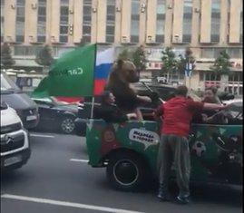 medvjed Moskva