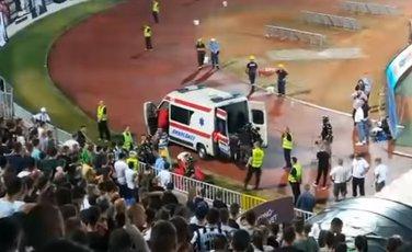 navijač Partizan