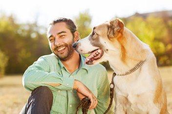kućni ljubimac, pas i muškarac