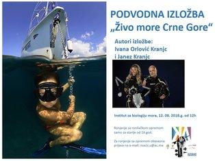 podvodna izložba Kotor