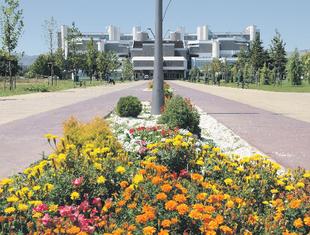 UCG, Univerzitet Crne Gore