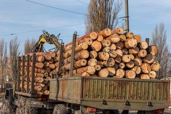 kamion s drvima, drva za ogrijev