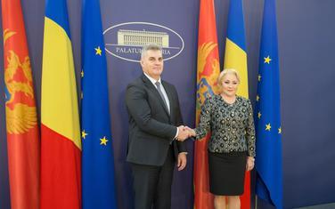 Ivan Brajović i Viorika Dančila
