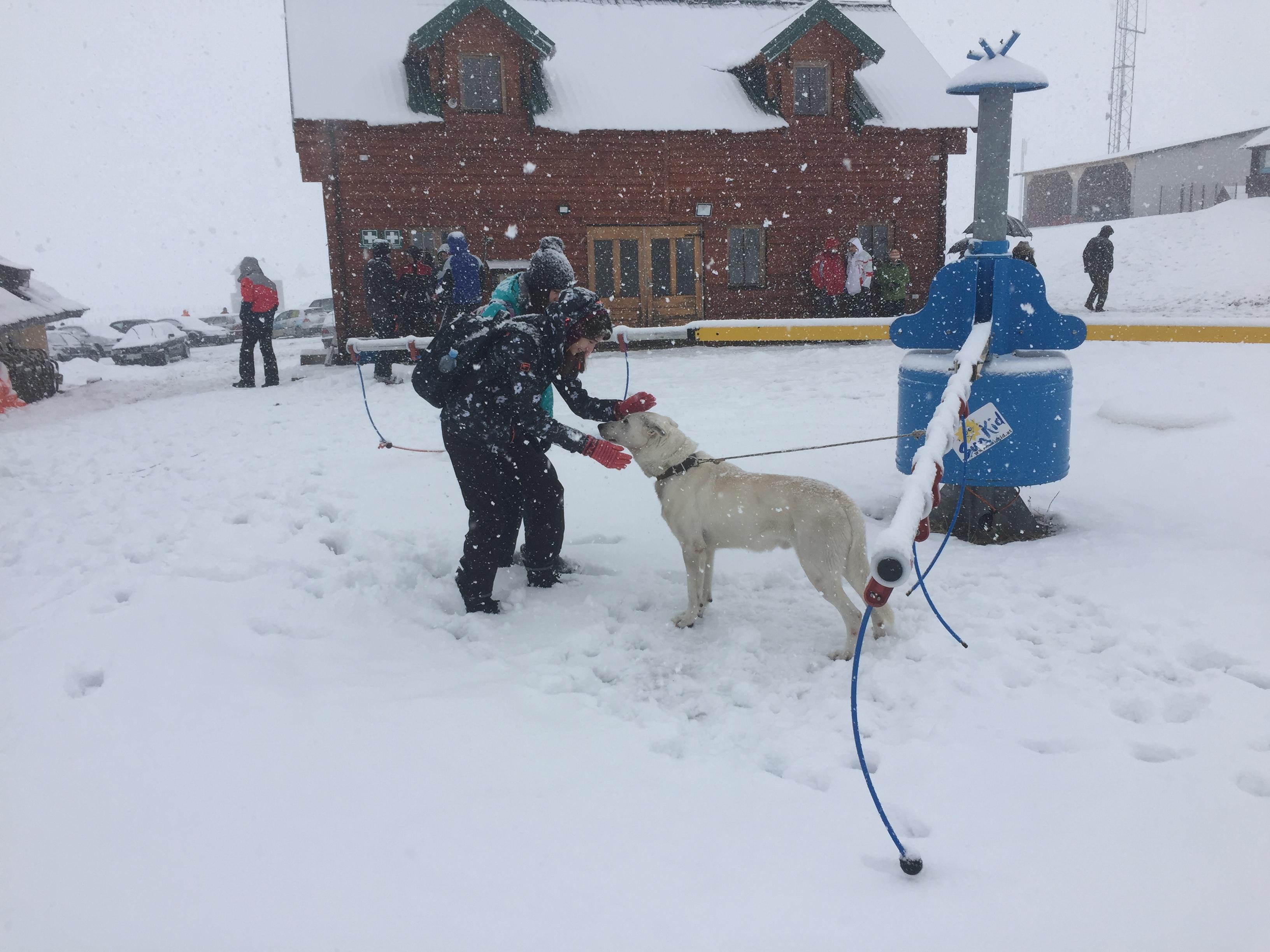 Bilo je raznih ljubitelja snijega
