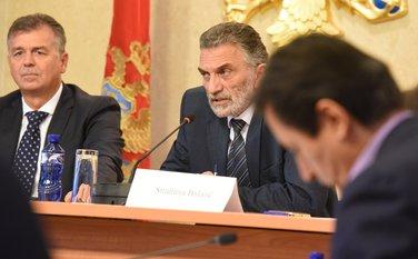 Odbor za reformu izbornog i drugog zakonodavstva, Branimir Gvozdenović, Strahinja Bulajić