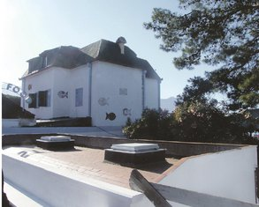 Vila Manojlović