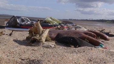 Priroda protiv plastike: Nemoguća misija ili nepostojanje efikasnog sistema