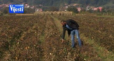 poljoprivrednici, šteta