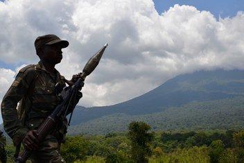 Kongo, vojska