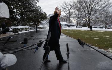Tramp u dvorištu Bijele kuće