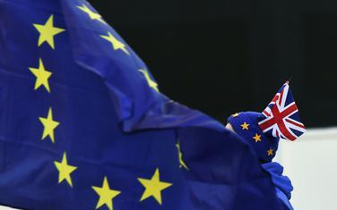 Protivnik izlaska Britanije iz EU ispred britanskog Parlamenta
