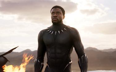 """Iz filma """"Crni panter"""""""
