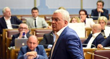 Andrija Mandić, DF