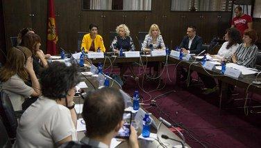 Istopolno partnerstvo rasprava