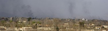 Damask Guta