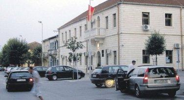 Danilovgrad, Opština Danilovgrad
