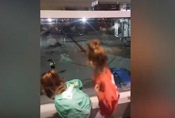 sestre, aerodrom, ples