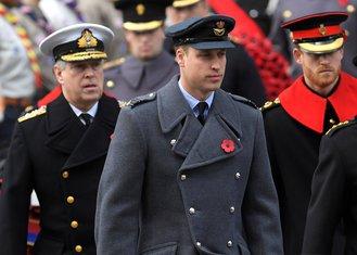 Princ Vilijam, Princ Hari
