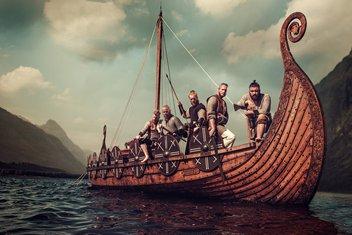 Vikinzi, Viking