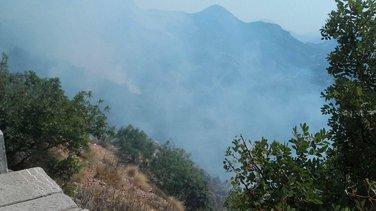 požar Petrovac, požar Budva