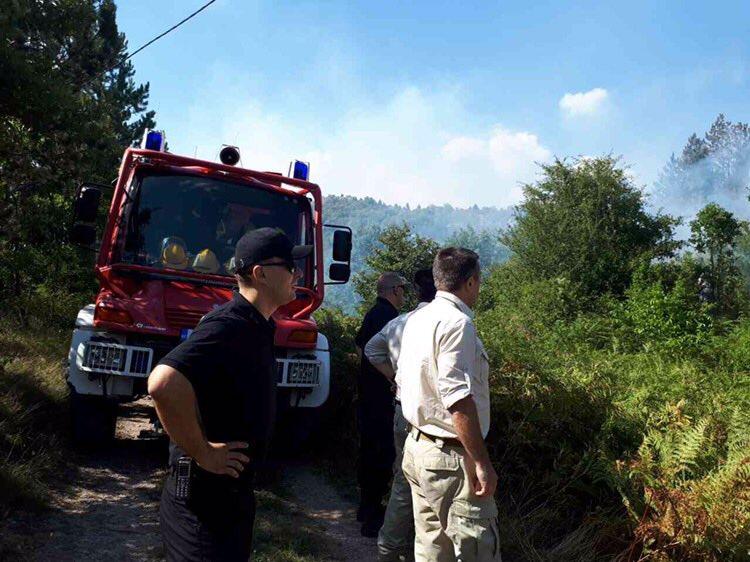 požar Podgorica, požar Radovče