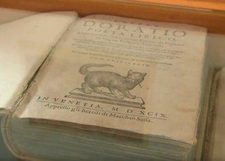 Muzej mačaka Kotor