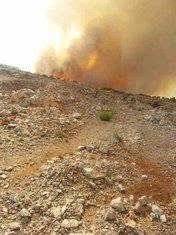 požar iznad Gošića