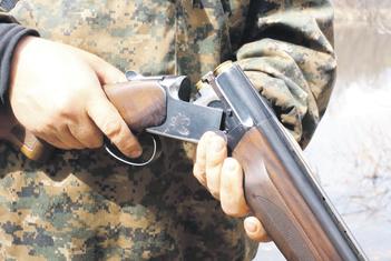 Lov, lovačka puška