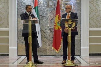 Srđan Darmanović, bin Zajed, UAE