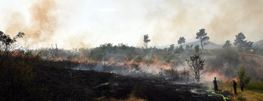 Dajbabska gora požar