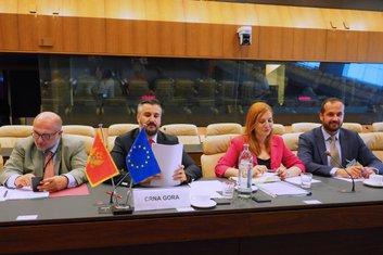 Aleksandar Pejović, EU