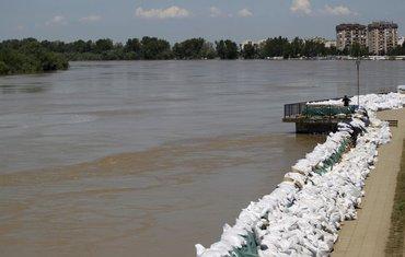 Srbija poplave Sava Sremska Mitrovica