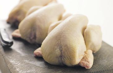 Piletina, meso, hrana, uvoz hrane, namirnice